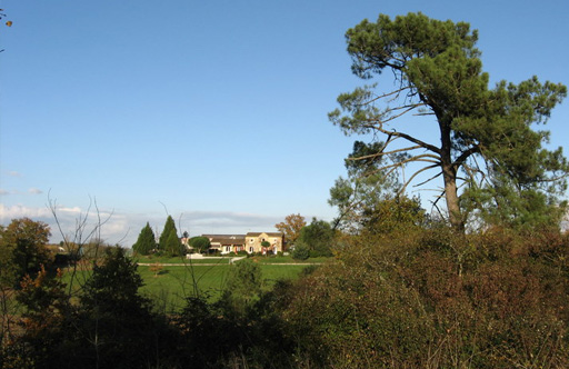 Chateau La Grange Clinet With Tree And Skyline